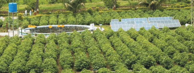 Jain Irrigation unit to supply €18.7 mn solar-powered irrigation system to Eritrea