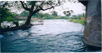 Set up a special board to resolve Cauvery water dispute – CWC Chairman