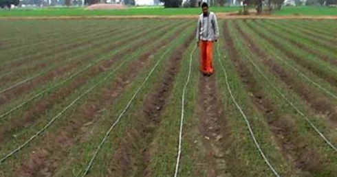 Expecting waivers, farmers stop paying back bank loans?
