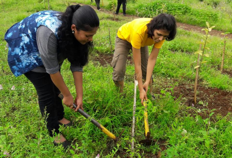 Cox & Kings helps organize afforestation drive in New Bombay