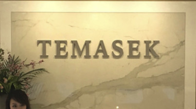 Temasek investment to boost growth – AU Bank MD