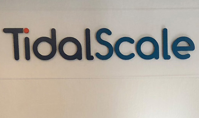 Infosys doubles investment in startup TidalScale to $3 mln